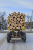 Timber transport on the winter road — Foto Stock