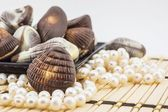 Chocolate seashells — Stock Photo