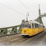 Freedom Bridge in Budapest, Hungary (misty morning) — Stock Photo #49308681