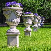 Vases with flowers in the park — Stock Photo