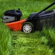 Lawn mower in garden — Stock Photo