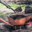 Wheelbarrow in a garden full of soil — Stock Photo