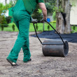 Stock Photo: Lawn roller walk