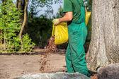 Gardener spills garden bark — Stock Photo