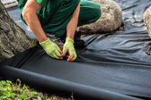 Weed barrier sheet installation — Stockfoto
