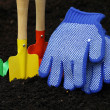 Stock Photo: Set of colorful accessories for gardening