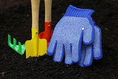 Set of colorful accessories for gardening — Stockfoto