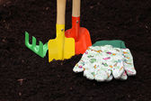 Colorful kit for gardening — Stock Photo