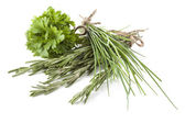 Different types of herbs — Stock Photo