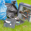 Stock Photo: Computer Garbage on grass