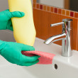 Bathroom cleaning — Stock Photo