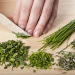 Stock Photo: Cutting herbs