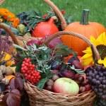 Wicker baskets in garden — Stock Photo