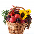 Fruits and flowers, autumn — Stock Photo