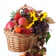 Autumn basket — Stock Photo