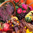 Colorful autumn stuff — Stock Photo