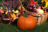 Pumpkin with autumn goodies — Stock Photo