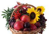 Basket with fruits and sunflower — Stock Photo