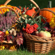 Autumn goodies — Stock Photo