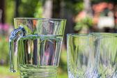 Bebida para coolnese — Foto de Stock