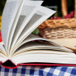 Stock Photo: Picnic novel