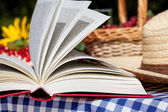 Picnic novel — Stockfoto