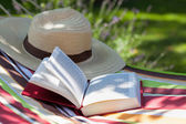 Book and hat — Foto de Stock