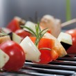 Shashlik closeup — Stock Photo