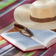 Book and hat — Stock Photo