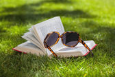 Book on the grass — Stock Photo