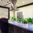 Stock Photo: Urbapartment - Travertine kitchen
