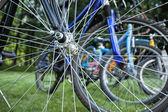 Rowery postrzegane przez szprychy — Zdjęcie stockowe