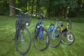 Four bicycles — Stock Photo