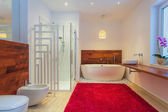 Modern bathroom with carpet — Stock Photo