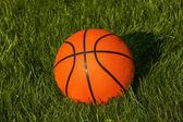 Basketball on the grass — Stock Photo