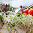 Bean sprouts — Stock Photo