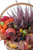 колоритная осень — Стоковое фото