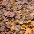 Stones in mud — Stock Photo #33727507