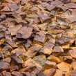 Stock Photo: Stones in mud