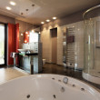 Luxury bathroom with bath and shower — Stock Photo #33924263