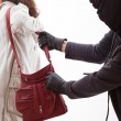Handbag thief — Stock Photo #34032199