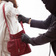 Handbag thief — Stock Photo