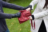 Bag theft — Stock Photo