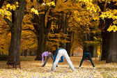 Stretching exercises in park — Stock Photo