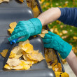 Man cleaning the roof in autumn — Stock Photo