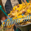 Rake on the wheelbarrow — Stock Photo