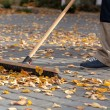 Stock Photo: Cleaning up driveway