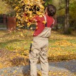 Stock Photo: Leaves pouring out pail