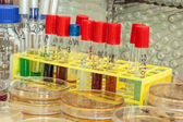Lab testing — Stock Photo