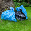 Rubbish sacks on grass — Stock Photo